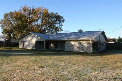 150 Briarwood Court, Van, TX 75790 - #: 10102331