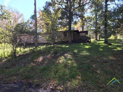 349 Pine Lane, Jefferson, TX 75657 - #: 10102333
