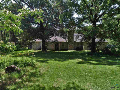 291 NE County Road 2045, Mt Vernon, TX 75457 - #: 10102412