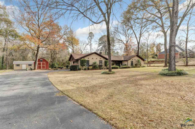 10991 Cr 2206 (Betty Drive, Tyler, TX 75707 - #: 10102485