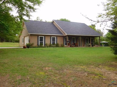 9127 Cr 3410, Brownsboro, TX 75756 - #: 10102489