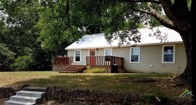 305 N Mill, Winnsboro, TX 75494 - #: 10102529