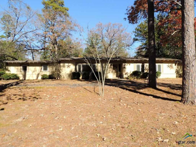 823 E Goode, Quitman, TX 75783 - #: 10102598