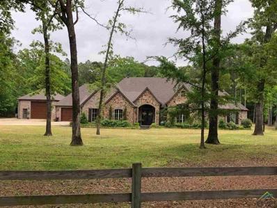 15030 Canopy Oaks Dr., Tyler, TX 75707 - #: 10102899