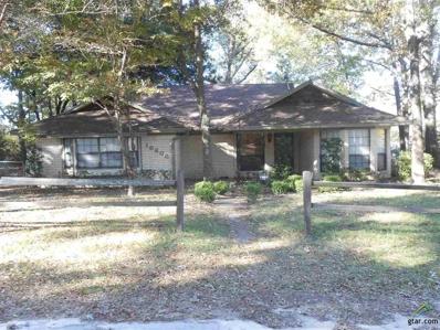 16608 Echo Glen, Tyler, TX 75703 - #: 10102916