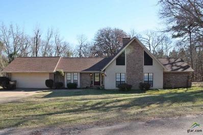 18184 County Road 1275, Tyler, TX 75703 - #: 10102987