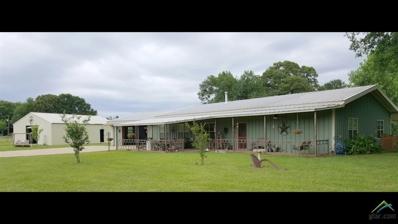 5201 Fm 2088, Winnsboro, TX 75494 - #: 10102996