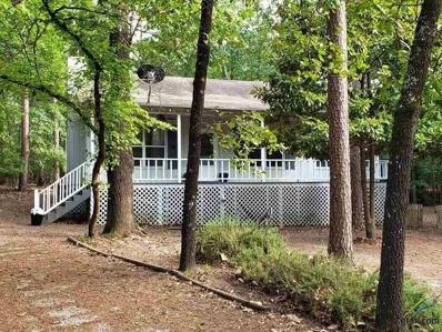 198 Birchwood Lane, Holly Lake Ranch, TX 75765 - #: 10103070
