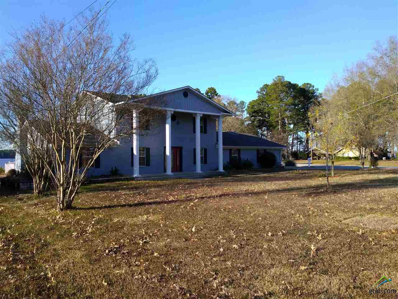 17958 W Lakeview, Troup, TX 75789 - #: 10103138