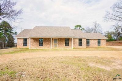 1636 Private Road 4012, Gilmer, TX 75644 - #: 10103200