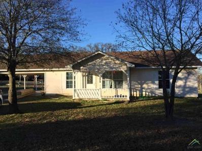 387 County Road 3211, Pittsburg, TX 75686 - #: 10103227