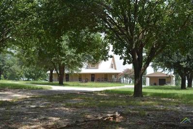 205 County Road 2315, Sulphur Springs, TX 75482 - #: 10103263