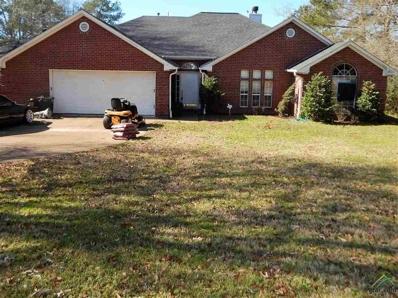 16150 Pin Oak Ridge, Tyler, TX 75707 - #: 10103274