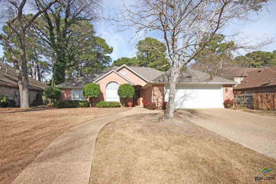 3316 Oak Village, Tyler, TX 75707 - #: 10103303