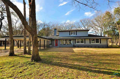 218 Brookside Dr, Hideaway, TX 75771 - #: 10103371