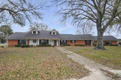 10651 Cr 127, Flint, TX 75762 - #: 10103424