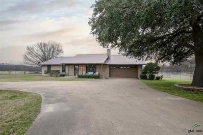 147 S Main Street, Yantis, TX 75497 - #: 10103509