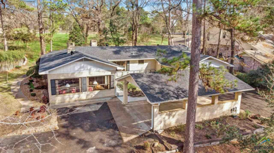 481 E Holly Trail, Holly Lake Ranch, TX 75765 - #: 10103568