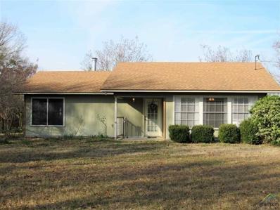 4919 N Fm 312, Winnsboro, TX 75494 - #: 10103603