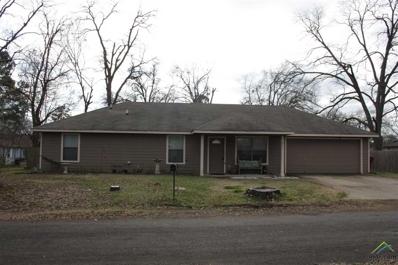 211 Turner, Mt Vernon, TX 75457 - #: 10103668