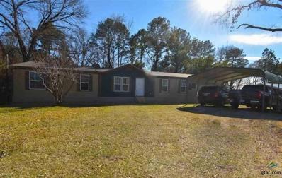 16574 Lakeview Cir, Whitehouse, TX 75791 - #: 10104085