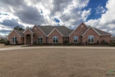 21822 Syrah Lane, Tyler, TX 75703 - #: 10104210