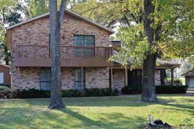 144 Kelsey Drive, Hideaway, TX 75771 - #: 10104327