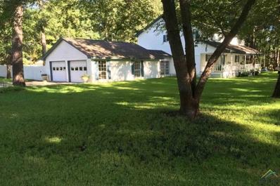 422 Oak Rd, Kilgore, TX 75662 - #: 10104354
