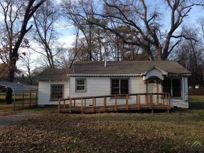 1204 Webb, Daingerfield, TX 75638 - #: 10104366