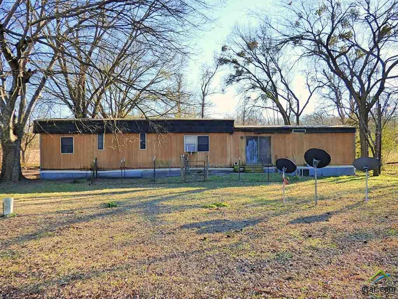 4781 Cr 4260, Mt Pleasant, TX 75455 - #: 10104407