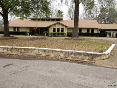 503 Christopher, Quitman, TX 75783 - #: 10104463