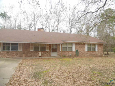 717 Randy Road, Quitman, TX 75783 - #: 10104583
