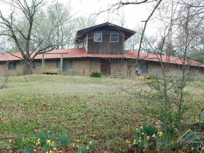 6542 Bois D Arc, Gilmer, TX 75644 - #: 10104617