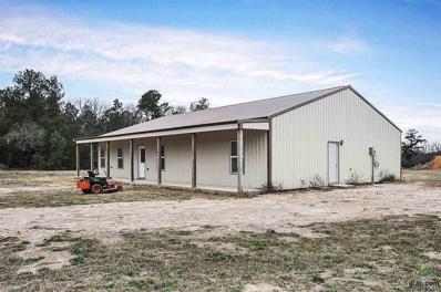 318 Palm Rd, Big Sandy, TX 75755 - #: 10104663