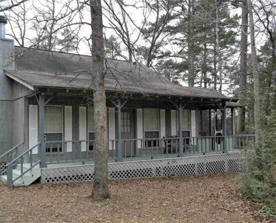 237 Blue Wing Ridge, Holly Lake Ranch, TX 75765 - #: 10104745