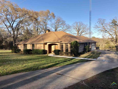 19529 County Road 2138, Troup, TX 75789 - #: 10104945