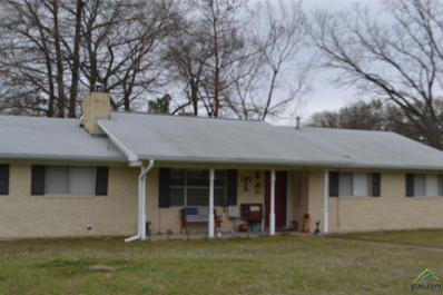 139 E. Nix Drive, Emory, TX 75440 - #: 10105200