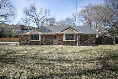12560 Lake Pines Dr., Tyler, TX 75707 - #: 10105204