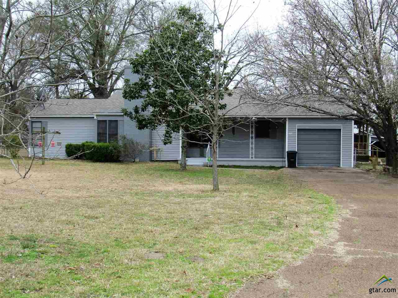 1451 State Highway 19, Emory, TX 75440 - #: 10105287