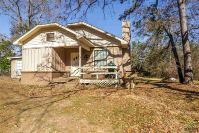 9065 Cr 2193, Whitehouse, TX 75791 - #: 10105377