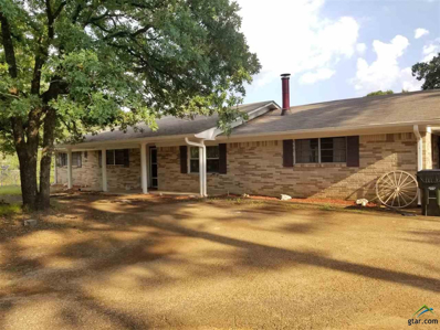 11857 County Road 41, Tyler, TX 75706 - #: 10105520