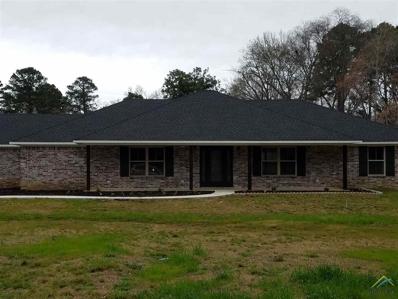 42 Circle Rd, Longview, TX 75602 - #: 10105524