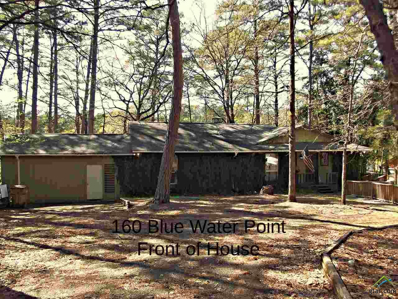 160 Blue Water Point, Holly Lake Ranch, TX 75765 - #: 10105813