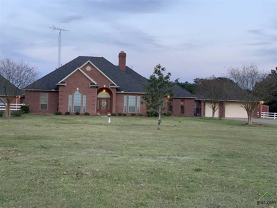 7781 County Road 476 S, Henderson, TX 75654 - #: 10105897