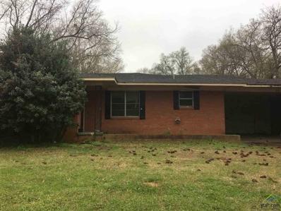 410 E Main St, Whitehouse, TX 75791 - #: 10106117