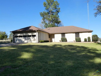 460 Greenbriar Trail, Holly Lake Ranch, TX 75765 - #: 10106190