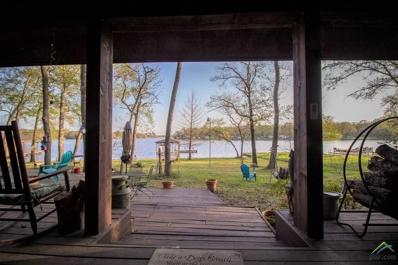 360 Island Drive, Murchison, TX 75778 - #: 10106245