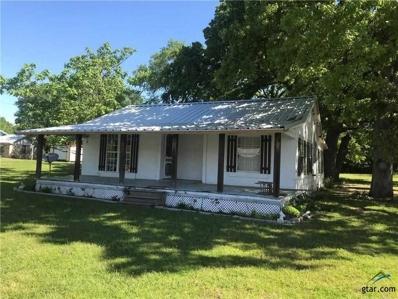 410 Orchard St, Alba, TX 75410 - #: 10106339