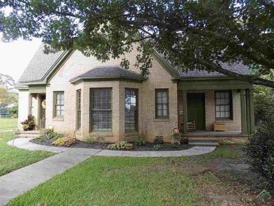 604 N Main, Winnsboro, TX 75494 - #: 10106389