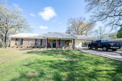 407 Lake Drive, Quitman, TX 75783 - #: 10106494
